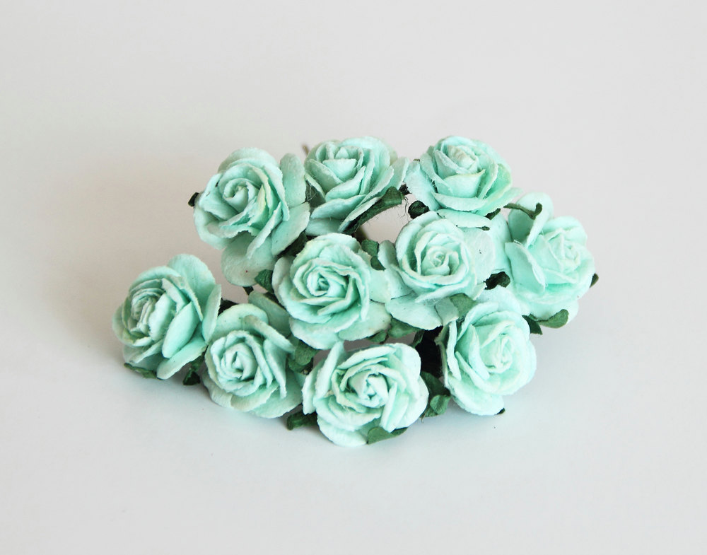 Go mint green this wedding season wonder wardrobes for Green colour rose images