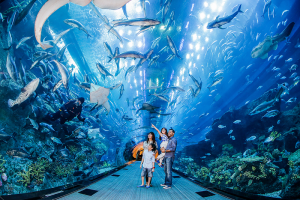 Dubai Aquarium and Zoo