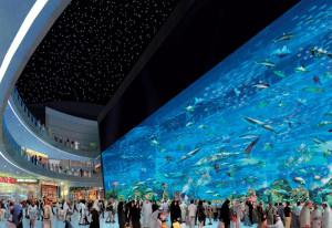 dubai-aquarium-5