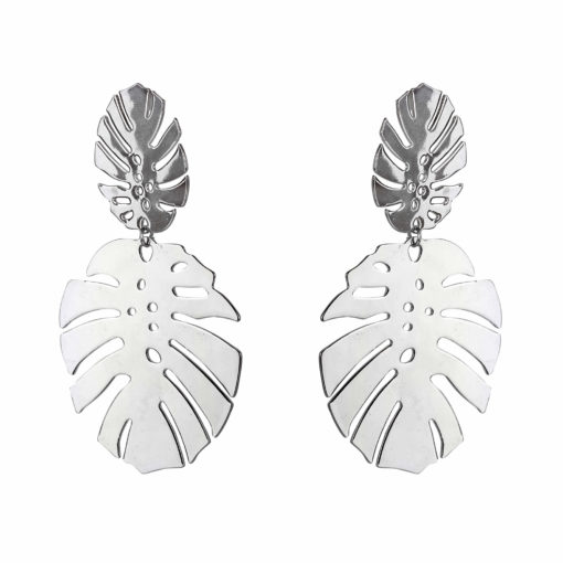 Tropical Wonder Silver Earrings For Women 01